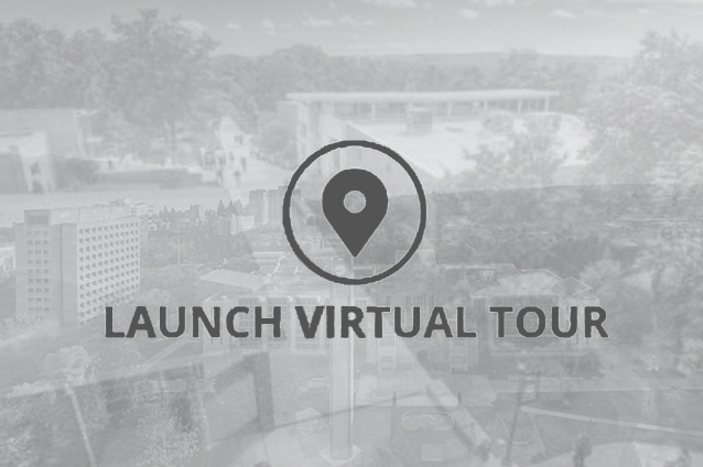 Website 360 Virutal Tour